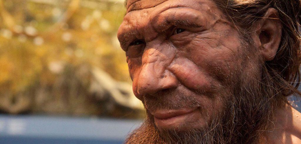 neanderthal-model-full-width